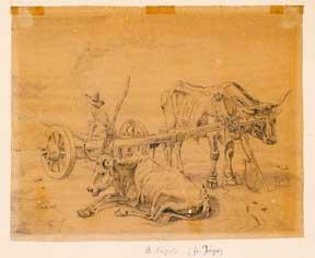 Napoli. [Two drawings of Farmers and Farm animals].
