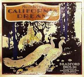 Sunkist California Dream [Golden Peacocks].: Bradford Brothers.