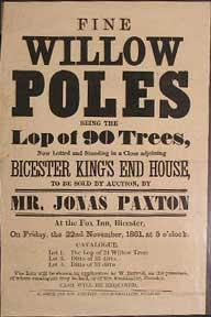 Fine Willow Poles being the Lop of 90 Trees. Bicester [original auction poster].
