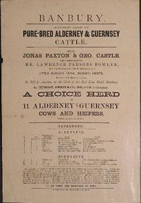 Autumn Sale of Pure-Bred Alderney & Guernsey Cattle. Banbury [original auction poster].