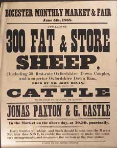 Upwards of 300 Fat & Store Sheep and Several Head of Cattle. Bicester [original auction poster].
