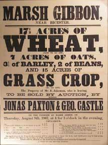 17 1/2 Acres of Wheat (Part to go off), Oats, Barley, Beans and Grass Crop. Marsh Gibbon, near Bi...