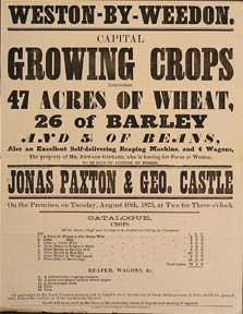 Capital Growing Crops comprimising Wheat, Barley, and Beans. Weston-by-Weedon [original auction p...