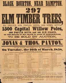 297 Elm Timber Trees, Willow, Ash, Poplar, Beech, and other Ditto; 1500 Capital Willow Poles. Bla...