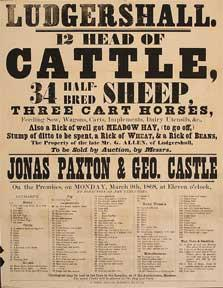 12 Head of Cattle, 34 Half-Bred Sheep, 3 Cart Horses, etc. Ludgershall [original auction poster].