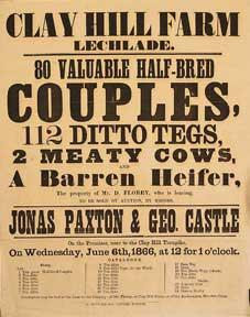 80 Valuable Half-Bred Couples, 112 Ditto Tegs, 2 Meaty Cows and a Barren Heifer. Clay Hill Farm, ...