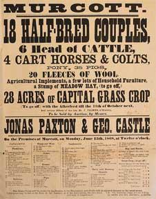 18 Half-Breed Couples, 6 Head of Cattle, Horses, Colts, Pony, Pigs, Fleeces of Wool. Murcott [ori...