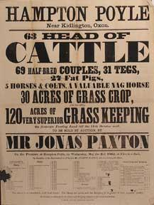 Head of Cattle, Half-Bred Couples, Tegs, Fat: Paxton, Jonas and