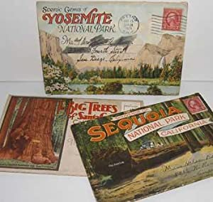 Souvenir Folders of Sequoia National Park, California;: Western Publishing &