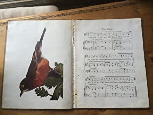 Songs About Birds - with twenty full page plates of Birds in natural colors: Jeannie R Smeltzer (...