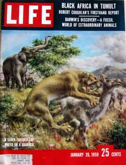 Life Magazine January 26,1959 -- Cover: Saber-Toothed