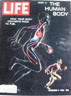Life Magazine December 7, 1962 -- Cover: The Human Body