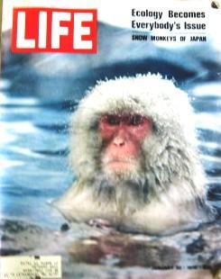 Life Magazine January 30, 1970 -- Cover: