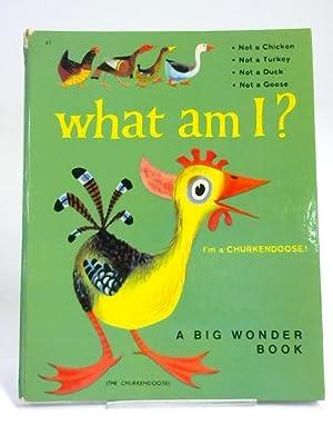 What am I?: Ben Ross Berenberg