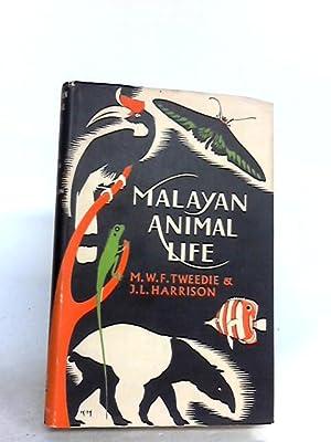 Malayan animal life: Tweedie, Michael