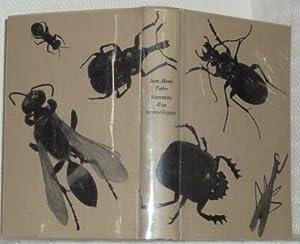 Souvenirs d?un entomologiste. Introduction de Jean Rostand.: FABRE, Jean-Henri.