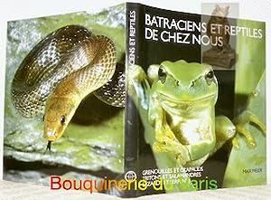 Batraciens et reptiles de chez nous. Grenouilles et crapauds. Tritons et salamandres. Lé...