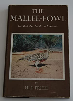 The Mallee-Fowl - The bird that builds: Frith, H.J.