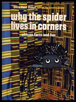 WHY THE SPIDER LIVES IN CORNERS - African Facts and Fun