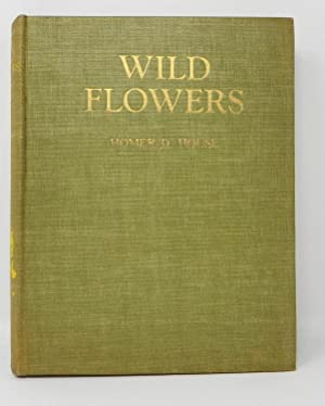 Wild Flowers: Three Hundred and Sixty-four Full-Color: Homer D. House