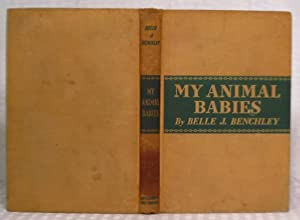 My Animal Babies: Belle J. Benchley