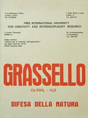 Grassello Ca (OH)s + H2O Difesa Della: Art - Beuys,