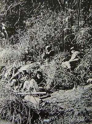 Sanrizuka 1969-1971: Photography - Kitai,