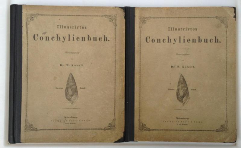 Illustrirtes Conchylienbuch. (in 2 Bänden),: Kobelt, W. [Wilhelm]