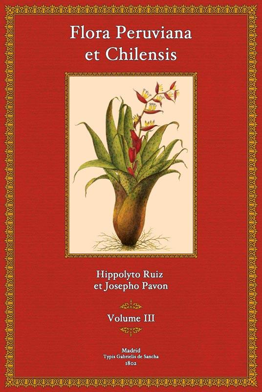 Flora Peruviana et Chilensis, Tomus III: Hippolyto Ruiz et