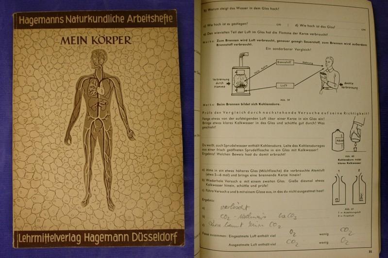 Hagemanns naturkundliche Arbeitshefte - Heft 1: Mein: Oehmen, Heinz