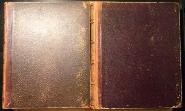 Illustrirtes Conchylienbuch: Kobelt, W. [Wilhelm]