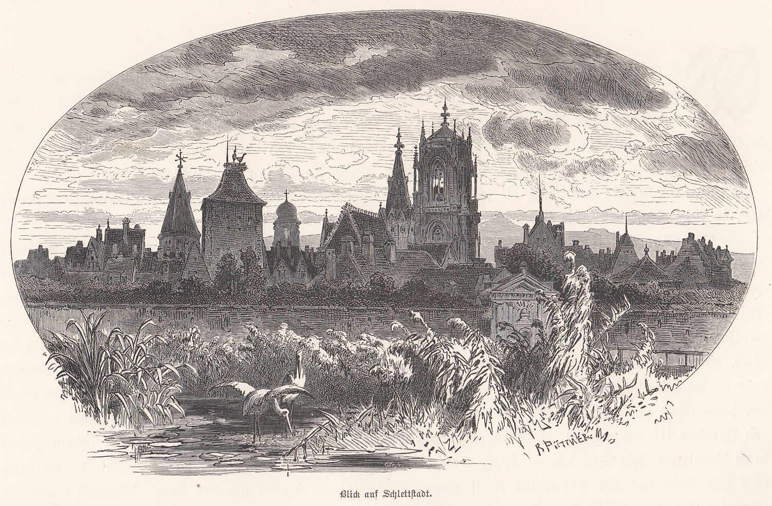 Blick auf Schlettstadt. Ansicht mit einem Storchenpaar: Schlettstadt/Sélestat,
