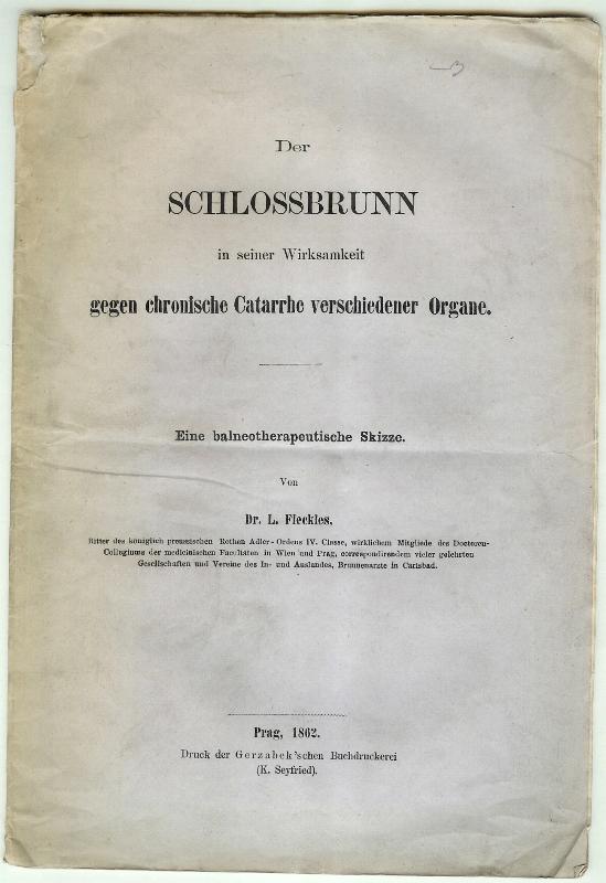 Der Schlossbrunn in seiner Wirksamkeit gegen chronische: FLECKLES, L[eopold]: