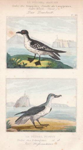 Das Dambrett - Der Wasserscherer. Zwei Darstellungen: Alken -