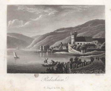 Teilansicht mit Rhein. Aquatinta-Kupferstich von Tanner bei: Rüdesheim -