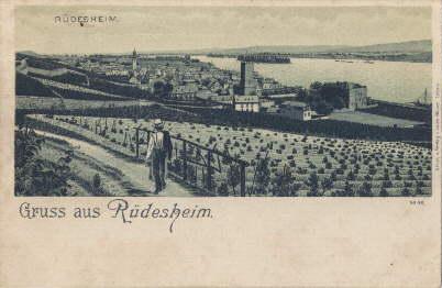 Gruss aus Rüdesheim. Ansichtskarte in Photolithographie. Ungelaufen.: Rüdesheim -