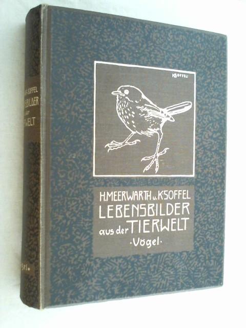 Lebensbilder aus der Tierwelt. 4. Band Zweite: Meerwarth, Hermann und