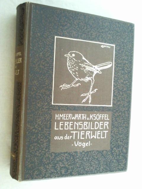 Lebensbilder aus der Tierwelt. 5. Band Zweite: Meerwarth, Hermann und