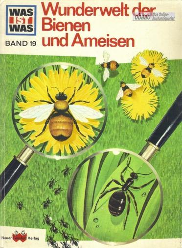 Was ist Was Band 19 - Wunderwelt: Ronald N. Rood