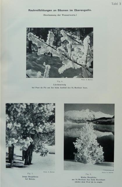 Zum Wasserhaushalt des Schweizer Hochgebirges. I. Band.: Lütschg-Loetscher, O. [Otto];