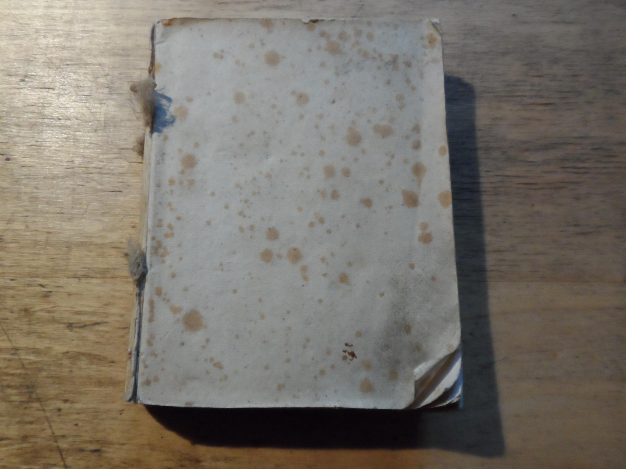 Handbuch für Reisende am Rhein von Schafhausen: Schreiber,Aloys