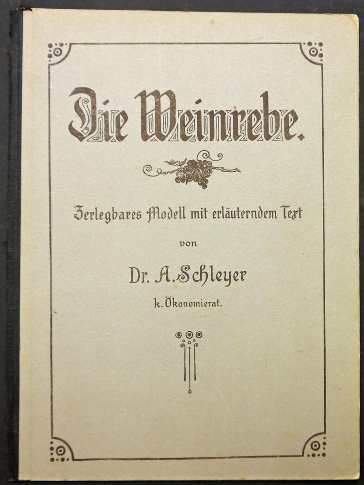 Die Weinrebe. Zerlegbares Modell mit erläuterndem Text.: Schleyer, August.