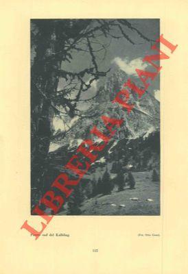 Le meraviglie delle Alpi. Ediz. italiana tradotta: SCHATZ Jos. Jul.