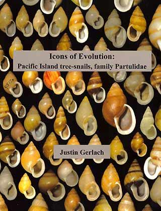 Icons of Evolution: Pacific Island tree-snails, family: Gerlach, J.