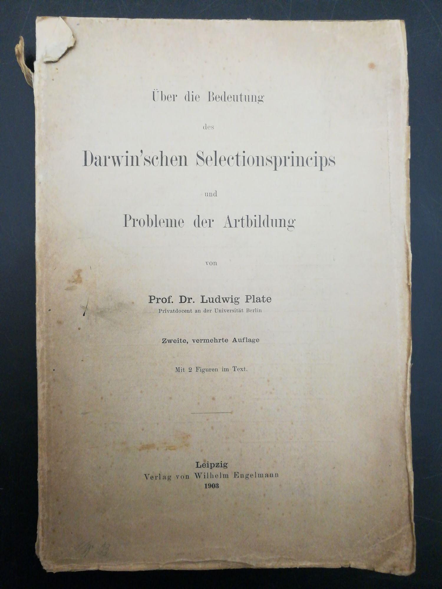 Über die Bedeutung des Darwin'schen Selectionsprincips und: Plate, Ludwig