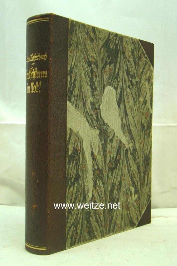 Deutschtum in Not!: Rohrbach, P.,: