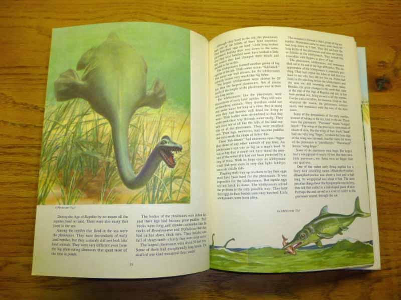 The Golden Treasury of Natural History by Bertha Morris Parker: Very Good  Hardcover w/ Jacket (1952) | JDBFamily