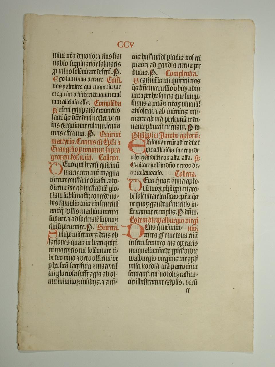 Missale Coloniense. (GWM 24321, C 4115). Blatt