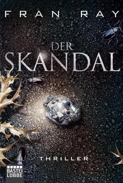 Der Skandal: Thriller (Allgemeine Reihe. Bastei Lübbe Taschenbücher) - Fran Ray