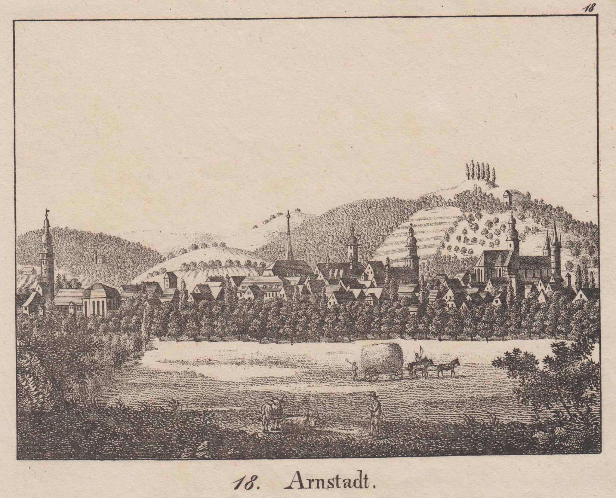 Gesamtans.: Arnstadt: